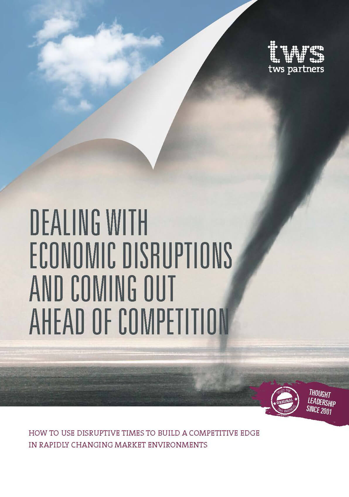 <span>WHITEPAPER</span> Market disruptions